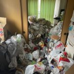 ゴミ屋敷リビング